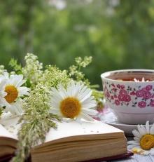 Lato z Biblioteką